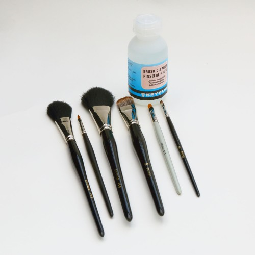 Brush set 4 - makeup bag essential plus
