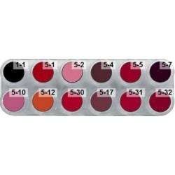 Lipstick LF 12 colour palette