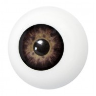Artificial eye brown