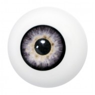 Artificial eye grey