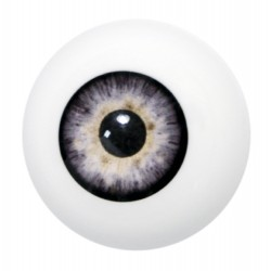 Artificial eye grey