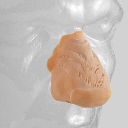 Latex false nose - Grimas code  23 werewolf